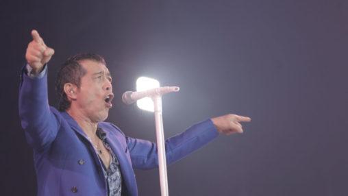 E.YAZAWA / STAY ROCK